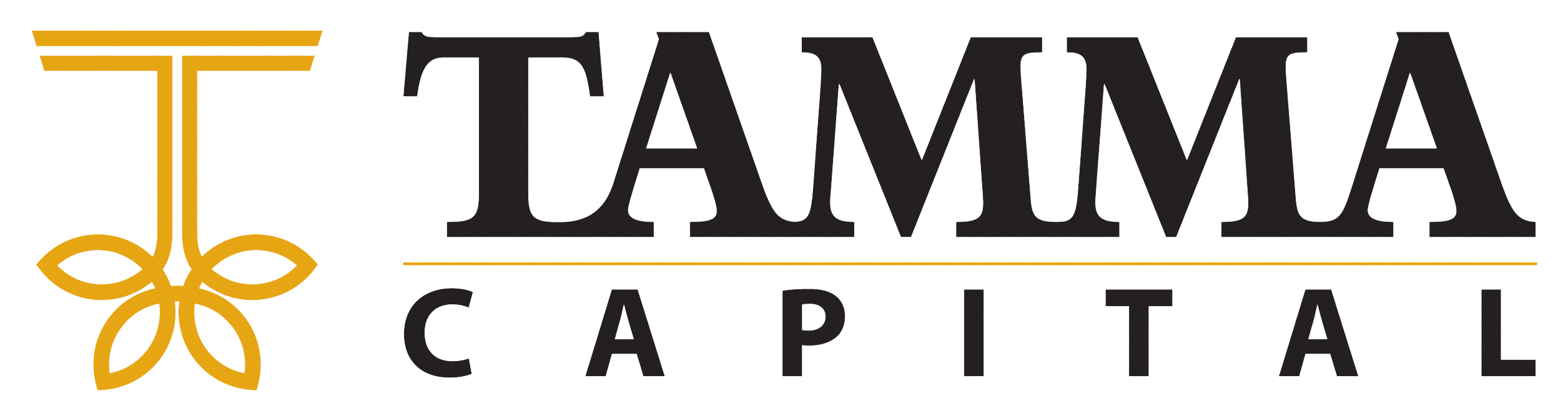 Tamma Capital | Personalized Investing for Your Future